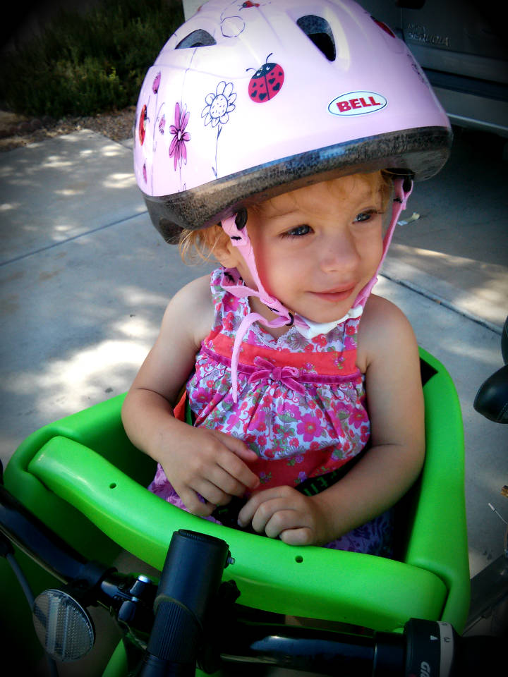 child safety carrier for bikes